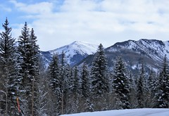 Winter Backroads (Patricia Henschen) Tags: marble colorado mountain mountains westelk clouds winter trees nationalforest scenichistoricbyway forest snow backroad rural whiteriver crystal river