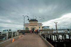St. Kilda Melbourne (ericmontalban) Tags: melbourne australia stkilda birds dusk