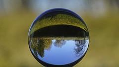Glaskugel (Kurt Hollstein) Tags: glaskugel foto fotografieren naturfotograf canon 5dmarkiii landschaft