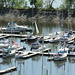 Boats in the marina as seen from Parc du Bois-de-Coulonge, Quebec
