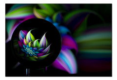Abstract 1 (Pamsar) Tags: light colour abstract lensball