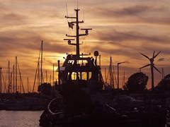 Hafen Burgstaaken am Abend | 14. September 2019 | Fehmarn - Schleswig-Holstein - Deutschland