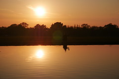 hi (louiserosesetter) Tags: reflection man waving reflected double sunset orange sky pond water