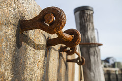 Rusted Rung (brucetopher) Tags: ladder rung rusted rust rusty decay harbor wall rocks hardware metal steel