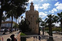 Sevilla - Torre del Oro (Rafa Gallegos) Tags: sevilla andalucía españa spain torredeloro arquitectura architecture