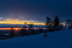 Pyöräilijä aamulla Nipasella (VisitLakeland) Tags: finland lakeland mtb tahko bike cycling luonto maastopyörä maisema nature outdoor pyörä scenery talvi winter
