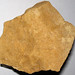 Hillsboro Sandstone (Lower Devonian; northwest of Sinking Spring, Ohio, USA) 11