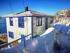 Blizzard (Rabbittownie) Tags: st johns newfoundland labrador canada