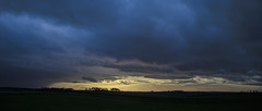 under louring skies (Redheadwondering) Tags: sonyα7ii canon40mmf28cheapadapter wiltshire landscape trees stonehenge copse clouds cloudscape