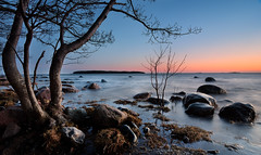 An evening by the sea (Kimmo Järvinen) Tags: tokina tokina1116mmf28 atx116prodx cokin filter 1116mm beach rock rocks sea island water nikon d500 tree nature landscape maisema sunset suomi finland helsinki lauttasaari meri evening light shadow ilta sky orange blue