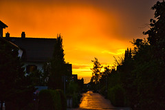 Summer sunset after the rain (echumachenco) Tags: evening sunset pink orange sky cloud road water rain reflection house building street pavement tree summer july outdoor weather freilassing berchtesgadenerland bavaria bayern germany deutschland nikond3100 hedge bush