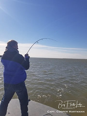 Cooper3_0119 (Bay Flats Lodge Seadrift, Texas) Tags: fishing lodge guides ranch bay flats seadrift properties captain chris martin marina services outfitters fly sight casting simmons boats sabine texas parks cca bct airboat red castaway coastal marsh matagorda