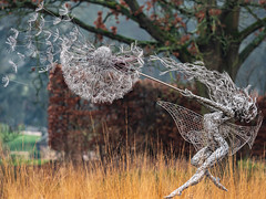 Dancing with Dandelions (ukmjk) Tags: trentham fairies fairy staffordshire stoke nikon nikkor d750 wire sculpture dancing with dandelions