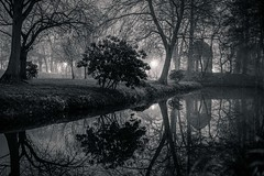 Melancholy (andreasmally) Tags: blackandwhite fürstenau denkmal memorial schlossteich schlosspark pond wasser water bäume trees niedersachsen lowersaxony germany deutschland
