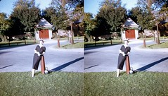 Batch G 0168 (dizzygum) Tags: vintage 3d stereo slide image 1959 posed woman