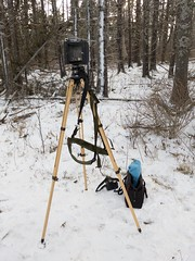 IMG_20200121_145658 (philbrookjason) Tags: 4x5 large format film camera ries tripod