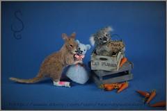Kangaroo & Koala (Teensyweensybaby) Tags: miniature miniatureanimal dollhouse oneinchscale kangaroo koala animal handmade
