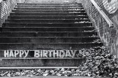 Happy Birthday to Kathy (michael_hamburg69) Tags: hamburg germany deutschland monochrome veddelermarktplatz unterführung unterwegsmitjutta photowalkmitelbmaedchen happybirthday chalk kreide treppe stairs schriftzug stufen steps