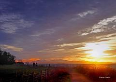 Ardgowan Sunset2 (g crawford) Tags: crawford panasonic lumix tz70 ayrshire northayrshire ardgowan lunderston inverkip inverclyde clyde riverclyde firthofclyde sunset sundown sky light