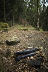 Woodland Fireside (Benjamin Driver) Tags: woods wood woodland tree trees forest burnt fire fireplace leaves northyorkshire north yorkshire moors northyorkshiremoors northyorkmoors northeast northeastengland england uk unitedkingdom