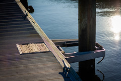 IMG_9546 (jmcguirephotography) Tags: 50mm canon 7d canon7d brunswick georgia bridge sidneylanierbridge sidneylanier water bird nature marsh
