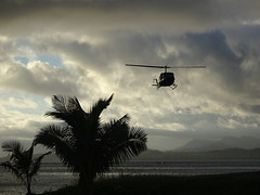 Incoming Helicopter (mikecogh) Tags: suva fiji helicopter overcast palms silhouette