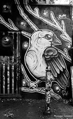 281A7619  Allen Park Thisones_art (blackbike35) Tags: england london londre allen park bricklane shoreditch art street wall wallart mur mural letters writing work bomb spray stencil pochoir urban urbex artists