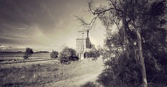 'round here.... (BillsExplorations) Tags: abandoned forgotten grainelevator closed traintracks ghosttown nebraska old oldfashioned sepia tree field rural ruraldecay railroad