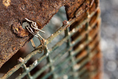 Fastened (brucetopher) Tags: rust cage trap brown green lobstertrap lobsterpot lobster fishing fasten wire mesh