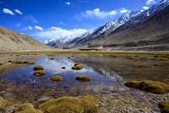 Wetlands (_Amritash_) Tags: lukung wetland lukungwetlands himalayas himalayanlandscape landscapes ladakh mountains snowcappedmountains reflections winterinhimalayas incredibleindia