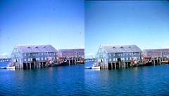 Batch G 0196 (dizzygum) Tags: vintage 3d stereo slide image 1959 building piers