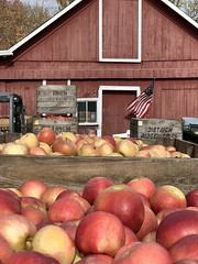 Apples (Kathy~) Tags: apple fruit red fall ff friendlychallenges