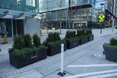 DSC07093 (rosslynbid) Tags: rosslyn bid planters new wilson blvd moore st metro