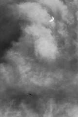 Spot the plane (ericmontalban) Tags: blackandwhite aircraft