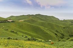 Vayang Rolling Hills (ericmontalban) Tags: vayangrollinghills batanes