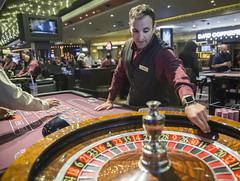 Las Vegas gambling (staceyltokunaga1) Tags: las vegas gambling stacey l tokunaga