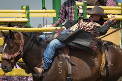 Strathmore Stampede 2018 (tallhuskymike) Tags: strathmorestampede event strathmore stampede rodeo 2018 cowboy horse prorodeo action alberta western outdoors