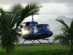 Blue Helicopter (mikecogh) Tags: suva fiji helicopter landing park palms