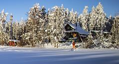 cabin2s (Adrian stoness) Tags: cabin north manitoba canada cotagecountry bush lynn lake northernmanitoba