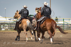Strathmore Stampede 2018 (tallhuskymike) Tags: strathmorestampede event strathmore stampede rodeo 2018 cowboy horse horses prorodeo action alberta western outdoors