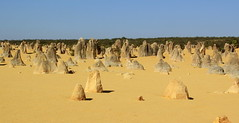 The Pinnacles (Graham`s pics) Tags: thepinnacles nambungnationalpark wa westernaustralia cervantes limestone limestoneformations rockformation attraction travel tourism pinnaclesdesert australia