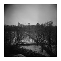 a little winter (Armin Fuchs) Tags: arminfuchs lavillelaplusdangereuse würzburg festungmarienberg fortress festung holga square 6x6 120mm mittelformat mediumformat analog film winter snow
