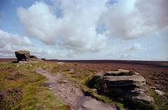 Ox Stones (ronet) Tags: 35mm pentaxmz5n ektar film gritstone heather kodak oxstones peakdistrict