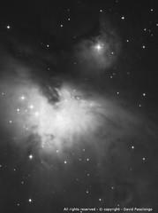 The Orion Nebula (Messier 42) (passilongo.david) Tags: orion orione star astrofotografia astronomia telescopio sky nebulosa nebulosadiorione m42 orionnebula