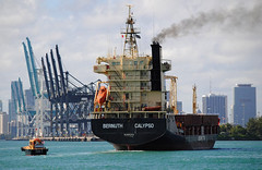 Bernuth Calypso Freighter (Infinity & Beyond Photography: Kev Cook) Tags: port miami bernuth calypso cargo ship freighter boat cranes photos