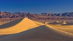 Mesquite Dunes 8834 B (jim.choate59) Tags: jchoate on1pics landscape desert dunes sand mesquitedunes deathvalley goldenhour magichour morning