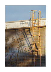 Let the Ladder (Thomas Listl) Tags: thomaslistl color sun sunny sunlight evening shadow lines geometry ladder orange blue sky garage mundane pattern 100mm architecture