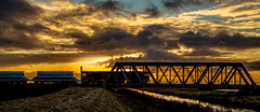 Pymoor (Peter Leigh50) Tags: bridge train railway silhouette sky skyscape sun water gbrf shed class 66 river