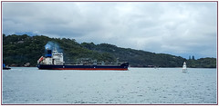 Ship on Sydney Harbour (Ggreybeard) Tags: ship tanker boat sydneyharbour navigation beacon