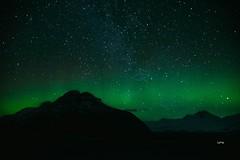 Aurora Borealis, Iceland (tonyg1494) Tags: yourculture flickrfriday auroraborealis photography tonygong national outside sky nature night white green landscape aurora iceland